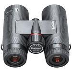 Nitro 10X36 Black Binoculars
